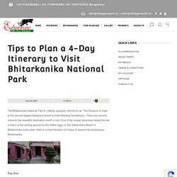 Tips to Plan a 4-Day Itinerary to Visit Bhitarkanika National Park - Estuarine Village Resort