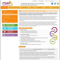 ITSAPPrésentation de l'ITSAP - Institut de l'abeille - ITSAP