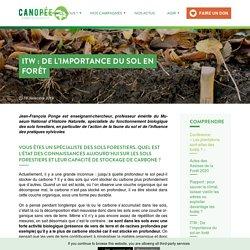 ITW : De l'importance du sol en forêt - Canopée