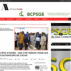 Côte d'Ivoire : une cité inédite pour les cultivateurs de cacao