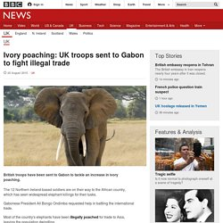 Ivory poaching: UK troops sent to Gabon to fight illegal trade