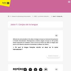 Jalon 1 : L'enjeu de la langue (française) (cours)