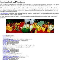 Jamaican Fruit and Vegetables