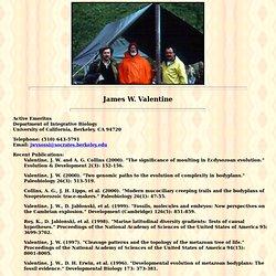 James W. Valentine