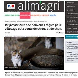 1er janvier 2016 : de nouvelles règles pour l'élevage et la vente de chiens et de chats
