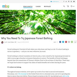 Why You Need To Try Japanese Forest Bathing - mindbodygreen