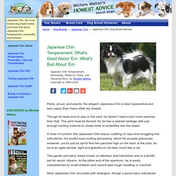 Japanese Chin: What's Good About 'Em? What's Bad About 'Em?