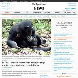 Researchers observe chimp mother and sister caring for disabled infant