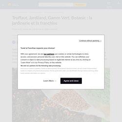 Truffaut, Jardiland, Gamm Vert, Botanic : la jardinerie et la franchise
