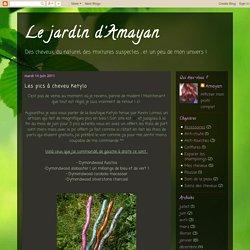 Le jardin d'Amayan: Les pics à cheveu Ketylo
