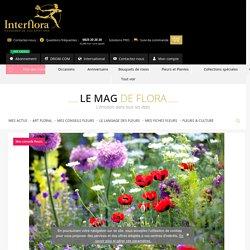 Un jardin fleuri toute l'année - Le Mag de Flora