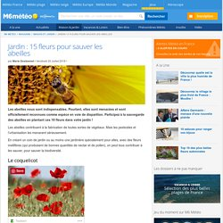 Jardin : 15 fleurs pour sauver les abeilles