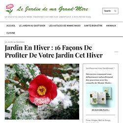 Jardin en hiver : 16 façons de profiter de votre jardin cet hiver