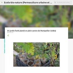Un jardin forêt planté en plein centre de Montpellier