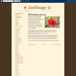 Présentation du site