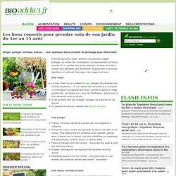 Jardinage écologique : les bons conseils pour prendre soin de son jardin du 1er au 15 août