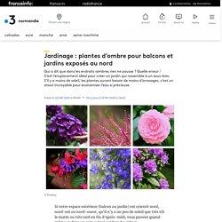 Jardinage : plantes d'ombre pour balcons et jardins exposés au nord