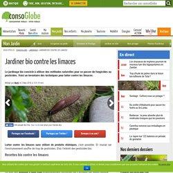 Jardinez bio contre les limaces