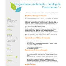 Recette du champagne de sureau - Les Jardiniers Ambulants : Le blog de l'association !