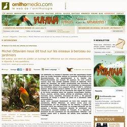 Michel Ottaviani nous dit tout sur les oiseaux à berceau ou jardiniers