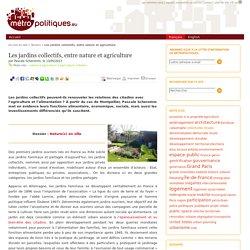 Les jardins collectifs, entre nature et agriculture