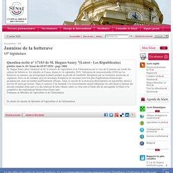 JO SENAT 02/07/20 Question parlementaire 17103 en cours - Jaunisse de la betterave.