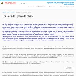 Les joies des plans de classe - Le Petit Scarabée
