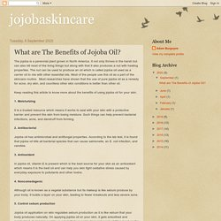 What are The Benefits of Jojoba Oil?
