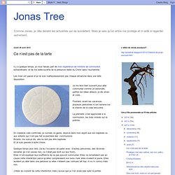 jonas tree