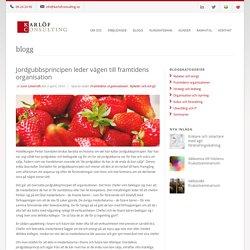 Karlöf Consulting Jordgubbsprincipen leder vägen till framtidens organisation - Karlöf Consulting