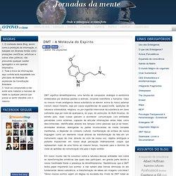 Jornadas da mente: DMT - A Molécula do Espírito