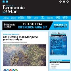Jornal de Economia do Mar