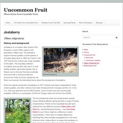 UW ext. Uncommon Fruit