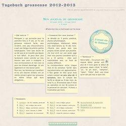 Journal de bord (grossesse 2013)