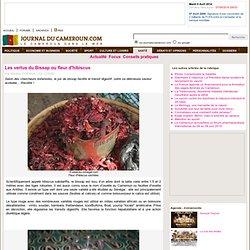 Les vertus du Bissap ou fleur d'hibiscus