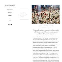 Journal — Mönica Bedmar
