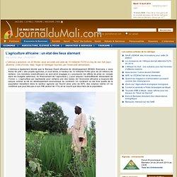 L'agriculture africaine : un état des lieux alarmant