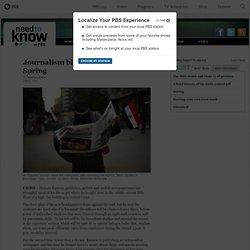 Journalism blooms in Egypt's Arab Spring