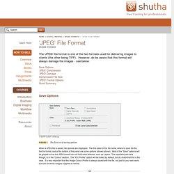 'JPEG' File Format