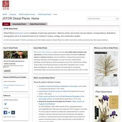 JSTOR Global Plants - LibGuides at JSTOR