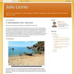 Julio Licinio: 11 secret beaches in Goa - Julio Licinio