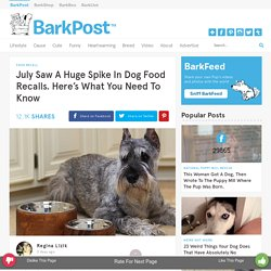July Saw A Huge Spike In Dog Food Recalls. Here's What You Need To Know