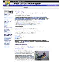 Junior Duck Stamp Program: Participate