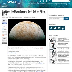 Jupiter's Icy Moon Europa: Best Bet for Alien Life?