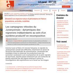 Les campagnes viticoles du Jurançonnais : dynamiques des vignerons indépendants au sein d'un système productif en recomposition