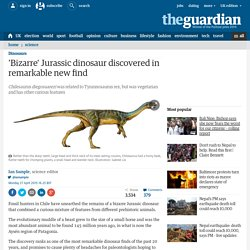 'Bizarre' Jurassic dinosaur discovered in remarkable new find