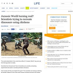 Jurassic World turning real? Scientists trying to recreate dinosaurs using chickens