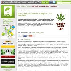Statut juridique du cannabis en Belgique – vue d'ensemble