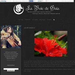 Jus d'Hibiscus - La Voie de Gaïa
