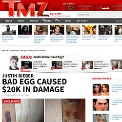 Bad Egg Caused $20,000 in Damage